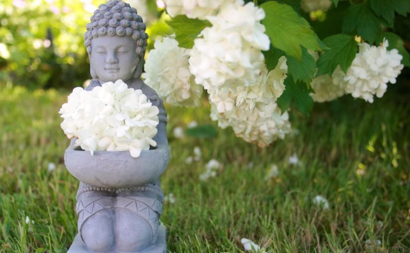 Yoga, alcune basi teoriche